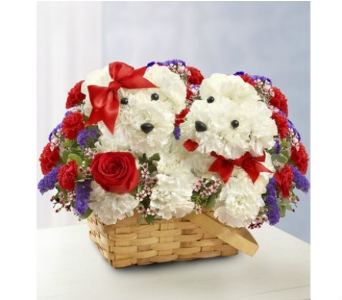Lucky in Love in Watertown CT, Agnew Florist