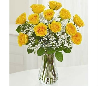 Dozen 60cm Yellow Roses in Winston Salem NC, Sherwood Flower Shop, Inc.