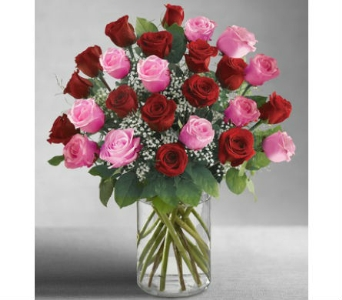 Ultimate Elegance 24 Long Stem Pink & Red Roses in Palm Desert CA, Milan's Flowers & Gifts