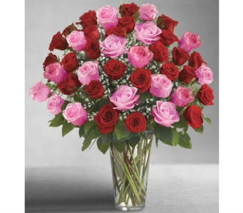 Ultimate Elegance 48 Long Stem Pink & Red Roses in Palm Desert CA, Milan's Flowers & Gifts