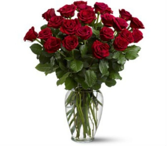 Two Dozen Red Roses in Naples FL, Naples Flowers, Inc.