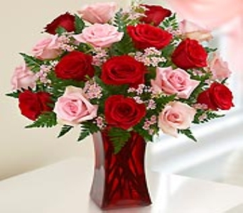 18 Red and Pink Roses in red vase in Allentown PA, Ashley's Florist
