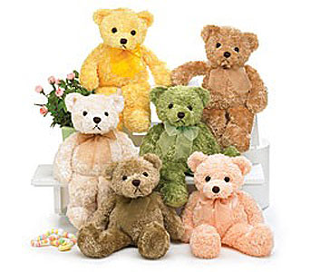 Pastel Bears in Manhasset NY, Town & Country Flowers