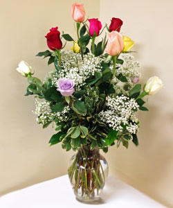 Dozen Mixed Color Roses in Naples FL, Gene's 5th Ave Florist