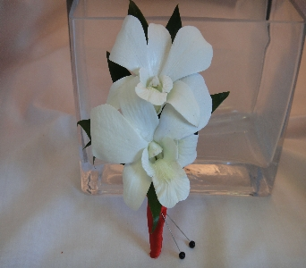 White Dendrobium Orchids with Red Wrap in Greenville SC, Expressions Unlimited