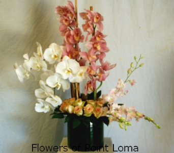 Orchids & Roses in San Diego CA, Flowers Of Point Loma