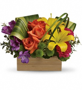 Teleflora's Shades Of Brilliance Bouquet in Austintown OH, Crystal Vase Florist
