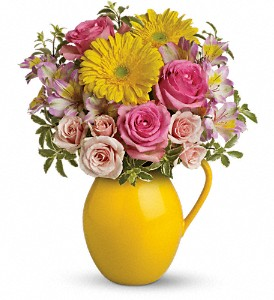 Teleflora's Sunny Day Pitcher Of Charm in Vancouver BC, Purple Rainbow Florist