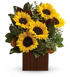 You're Golden Bouquet by Teleflora in Jamesburg NJ, Sweet William & Thyme