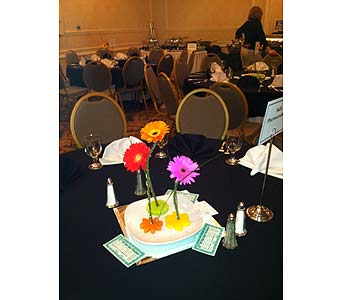 Dinner Centerpieces - Gerberas-View 1 in Wake Forest NC, Wake Forest Florist