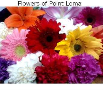 Interment Markers in San Diego CA, Flowers Of Point Loma