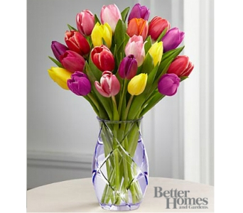 Spring Tulip Bouquet DELUXE in Arlington VA, Twin Towers Florist