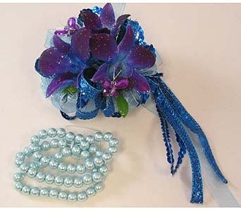 Wrist Corsage - Royal Blue* Dendrobium Orchids in Bloomington IL, Forget Me Not Flowers