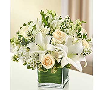Arrangements for Home in Whittier CA, Ginza Florist