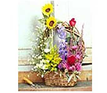Thoughtfulness Basket of Flowers in San Antonio TX, Allen's Flowers & Gifts