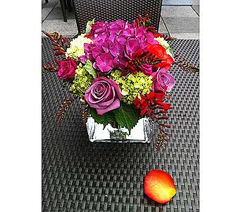Spring Squared Bouquet in Bellevue WA, CITY FLOWERS, INC.