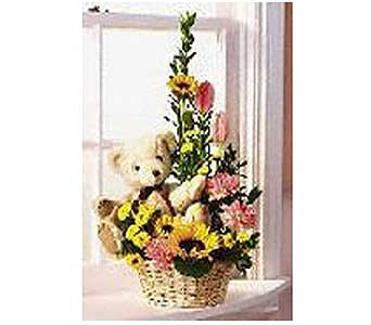 Welcome to Our World Bouquet in San Antonio TX, Allen's Flowers & Gifts