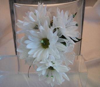 White Daisy Corsage in Greenville SC, Expressions Unlimited