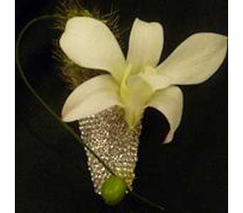 White Dendrobium Rhinestone Bout in McKees Rocks PA, Muzik's Floral & Gifts