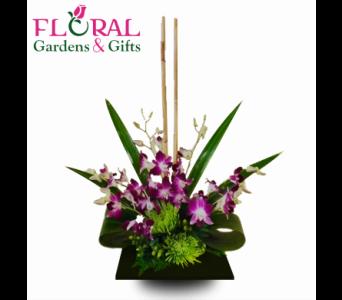 Dendrobium Zen In Palm Beach Gardens FL, Floral Gardens U0026 Gifts Gallery
