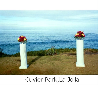 Pillars in San Diego CA, Flowers Of Point Loma