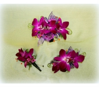 Purple Essence 3 Piece SET in Asheville NC, Kaylynne's Briar Patch Florist, LLC