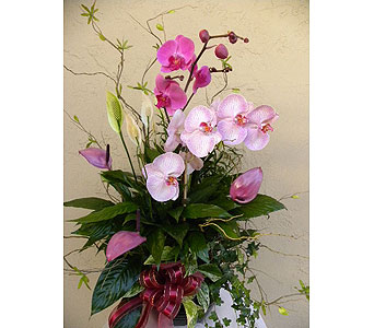 Planter with Orchids, Anthurium in Sunnyvale CA, Flowers By Sophia
