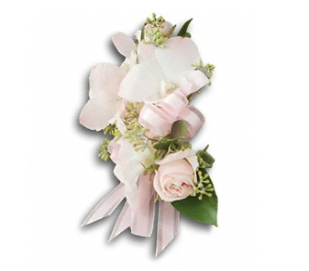 Beautiful Blush Corsage in Fairfield CT, Town and Country Florist
