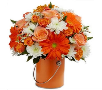 Color Your World- ORANGE in Mount Horeb WI, Olson's Flowers