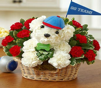 SPORTS HOUND in Port Charlotte FL, Punta Gorda Florist Inc.