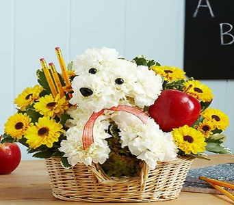 TEACHERS PET in Port Charlotte FL, Punta Gorda Florist Inc.