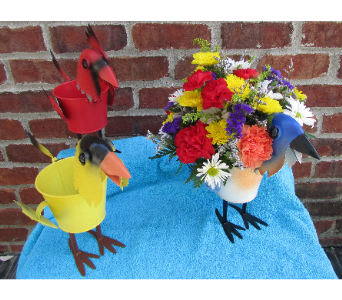 MINIATURE BIRD PLANTER-local delivery only in Circleville OH, Wagner's Flowers