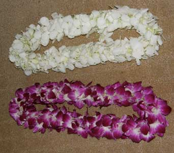 Purple double Dendrobium orchid lei - fresh from Hawaii/ hand strung in Oakland CA, J. Miller Flowers and Gifts