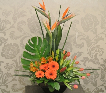 Arrangement Designer's Choice - Exotic in Toronto ON, The Flower Nook