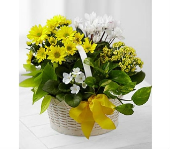 A Bit of Sunshine™ Basket by FTD® in San Clemente CA, Beach City Florist