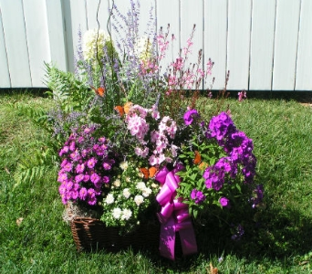 Blooming  Garden Plant Basket  in Amelia OH, Amelia Florist Wine & Gift Shop
