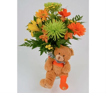 Get Well Bear in Indianapolis IN, Gillespie Florists