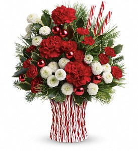 Teleflora's Peppermint Sticks Bouquet in San Jose CA, Almaden Valley Florist