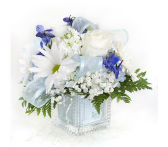Baby Boy Crystal Block in Nashville TN, Emma's Flowers & Gifts, Inc.