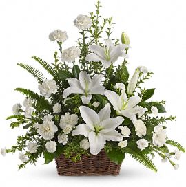 Peaceful White Lilies Basket in Clearwater FL, Hassell Florist
