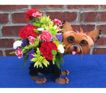 MINIATURE YORKIE PLANTER-for local delivery only in Circleville OH, Wagner's Flowers