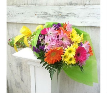 Color Your Daisy in San Clemente CA, Beach City Florist