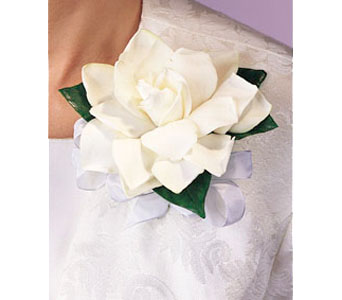 Single Gardenia Corsage in Brooklyn NY, Enchanted Florist