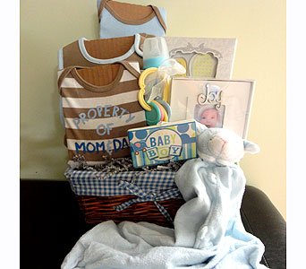 Welcome Baby Boy Basket in Tampa FL, Buds, Blooms & Beyond
