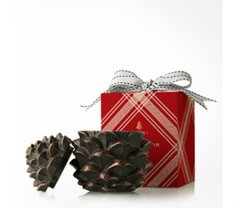 Thymes Limited Frasier Fir Pinecone candle in Bellevue WA, CITY FLOWERS, INC.