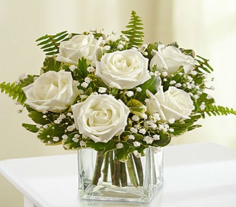 Love's Embrace Roses in White in Manhattan KS, Westloop Floral