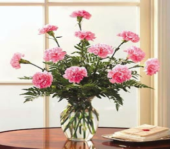 One Dozen Pink Carnations in Manhattan KS, Westloop Floral