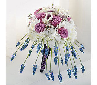 Purple Weddings 6 in Albuquerque NM, Silver Springs Floral & Gift