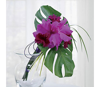 Purple Weddings 17 in Albuquerque NM, Silver Springs Floral & Gift