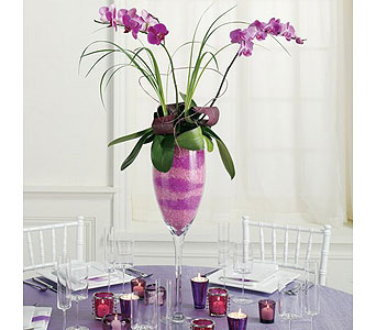 Purple Weddings 18 in Albuquerque NM, Silver Springs Floral & Gift